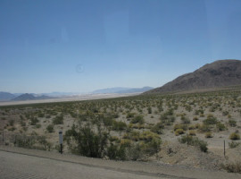 RockandFiocc ( e Ali) a Las Vegas?!!
