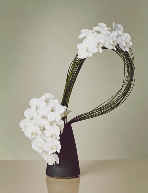 grid_ED_CH_v2.44_BEYOND_THE_BOUQUET_orchids