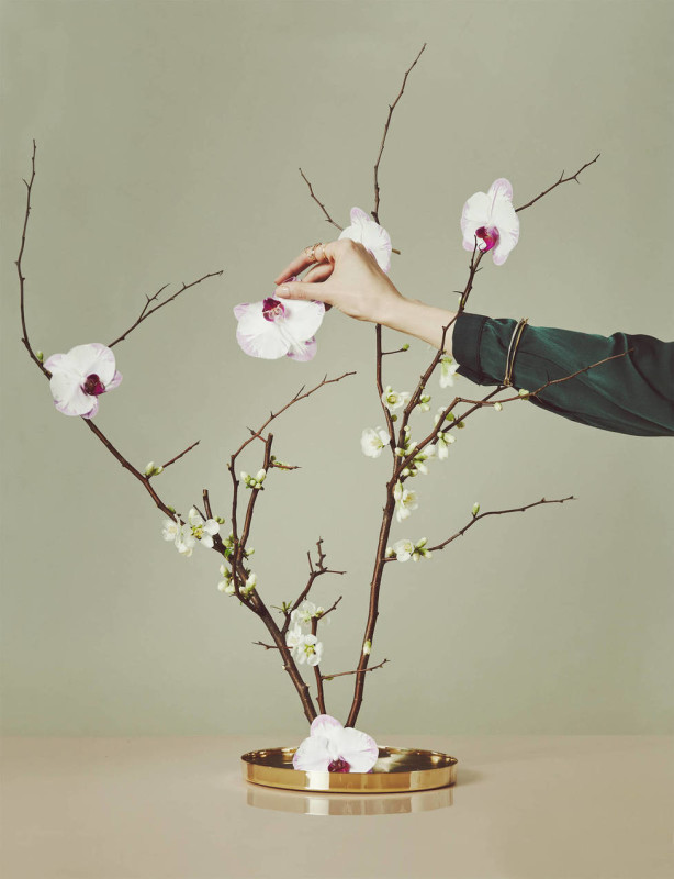 medium_ED_CH_v2.44_BEYOND_THE_BOUQUET_branch_blossoms_hand
