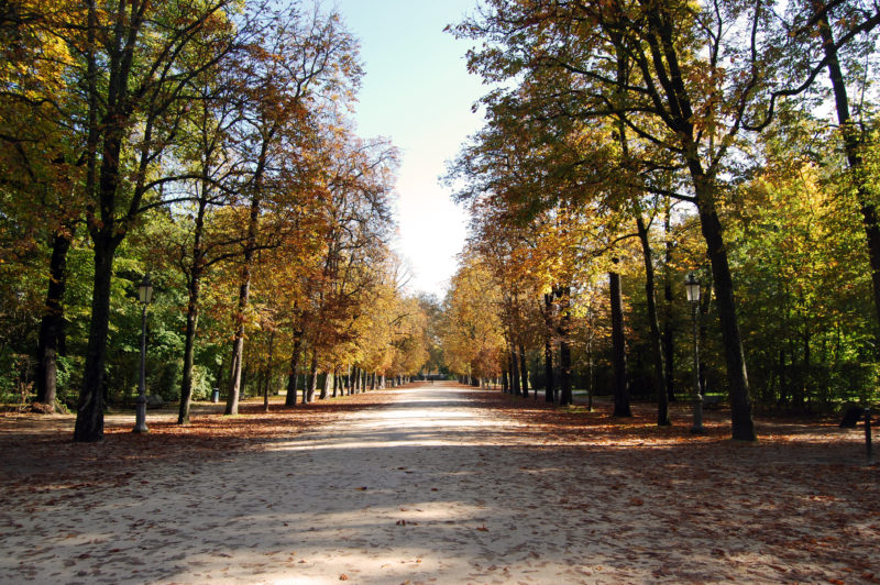 parco_ducale_parma