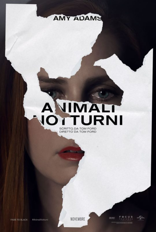 animali-notturni-1